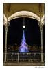 Sapin de lumière (Rémi Marchand) Tags: placewilson dijon illumination noël marchédenoël canon5dmarkiii nuit kiosque sapin lumière côtedor bourgogne