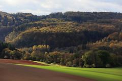 Germany - Moselle Valley (Michael.Kemper) Tags: canoneos6d canonef70200f4lusm canon eos 6d ef 70200 f4l f4 l usm voyage travel travelling reise germany deutschland rheinland pfalz rheinlandpfalz rhineland palatinate rhinelandpalatinate moselle mosel valley tal moseltal fluss flus river hike hiking wanderung wandern randonnée randonnee moseltraumpfad eltzer burgpanorama eltz castle panorama trail traumpfad traumpfade dream path herbst autumn fall foliage laub herbstlaub laubfärbung herbstlaubfärbung eifel burg wald forest baum bäume tree trees field fields feld felder