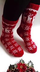 christmasmood) (olha-k) Tags: christmas handknitting handmadeinukraine handmade knitting accessories socks skarpety gift jacquard lviv lutsk вязання подарунок шкарпетки різдвянішкарпетки