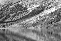 Canada, lake reflections (Vittorio Ricci (thanks +++ 3.3 millions views)) Tags: canada alberta bowlake canadianrockies banffnp