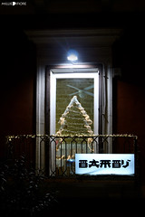 IMG_6964 (millie_difiore) Tags: finestra albero natale bambu luce ventana arbol navidad luces window tree lights christmas