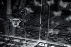 Into The Heart ...Of a Child (sdupimages) Tags: butterfly papillons musée candid regard looking londres london kif portrait child reflection museum rue street nb bw noirblanc blackwhite bug insect insectes sundaylights