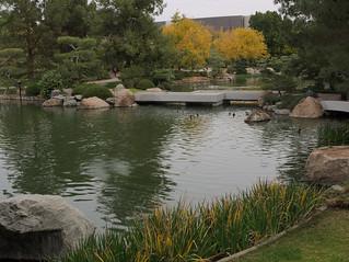 Garden bridge, Japanese Friendship Garden of Phoenix