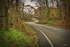 Ozarks Ribbon (Earthmonster Studio) Tags: asphalt ozarks winding road country rural hills mountains nature earthmonster missouri
