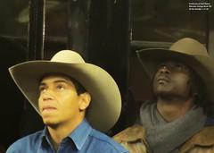 Professional Bull Riders, Monster Enrgy Buck Off,  1-7-18 (local1256) Tags: pbr professionalbullriders monsterenergybuckoff buckoff rodeo bull bullrider cowboy candid portrait madisonsquaregarden msg manhattan newyorkcity nyc candidportrait cowboyhat athlete neilholmes