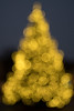 65006753-LR-3000 (the.digitaleye) Tags: bokeh christmas tree weihnachtsbaum tanne czj flektogon 35mm f24