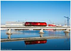 Gafanha da Nazaré 17-12-17 (P.Soares) Tags: takargo riadeaveiro comboio train tren vermelho linha linhas ramal ramalportodeaveiro cereais comboios carga caminhodeferro locomotiva locomotivas 6000 6002 diesel