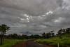 Australian Bush (betadecay2000) Tags: australien landstrase bush busch gras grass grasland wald forest himmel sky baum bäume landschaft feld norhtern northern territory top end