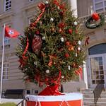 Maury Christmas - Columbia, TN thumbnail