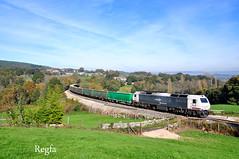 Sarria (REGFA251013) Tags: mercancias monfortedelemos tren train comboio 333300 renfe adif