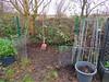 Neustart Komposthaufen (Sophia-Fatima) Tags: mygarden meingarten naturgarten gardening gemüsegarten küchengarten veggarden kompost compost komposthaufen