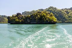 Malaysia-14694.jpg (CitizenOfSeoul) Tags: malaysia pulaulangkawi wildlife see langkawi andamanensee outdoor wildlebendetiere animal