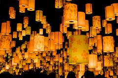 DSC_9816 (sayo-tsu) Tags: ランタン ライト lamp