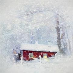 It´s snowing (BirgittaSjostedt) Tags: winter landscape cottage bird snow cold painting texture digitalpainting creation birgittasjostedt
