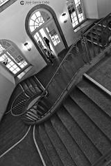 20171207 Kölh (157) Bonn R01 BN (Nikobo3) Tags: europe europa alemania renania colonia kölh architecture arquitectura escaleras travel viajes nikon nikond800 d800 nikon247028 bn bw interiores