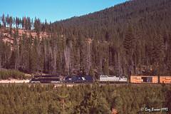 Bend Bound (C.P. Kirkie) Tags: burlingtonnorthern bn greatnorthern gn morrisonknudsen freighttrain klamathcounty oregon railroads trains emd sd40 forest