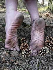 Woodland soles (Barefoot Adventurer) Tags: barefoot barefooting barefoothiking barefeet barefooter baresoles barfuss anklet toughsoles texture strongfeet soles stainedsoles wrinkledsoles woodland pineneedles pinecones pinetree healthyfeet happyfeet hardsoles heelcracks roughsoles ruggedsoles naturallytough naturalsoles nature naturally natural toes grounded grimysoles connected callousedsoles callouses earthsoles earthstainedsoles earthing energy