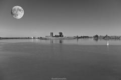 My special moon - II (ricardocarmonafdez) Tags: sevilla guadalquivir luna moon paisaje landscape riverscape river rio shore rivershore edition processing monocromo monochrome blackandwhite bn ricardojcf ricardocarmonafdez 60d 1785isusm canon