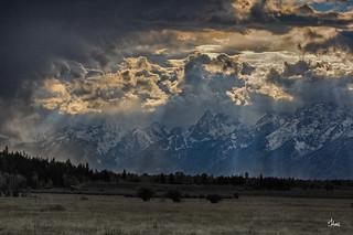 A Storm's Brewing - 8404b+