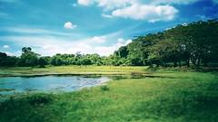 Taman Tasik YDP Slim River Tanjong Malim - http://4sq.com/1RI8Qz #travel #holiday #nature #Asian #Malaysia #travelMalaysia #holidayMalaysia #Perak #slimRiver #大自然 #旅行 #度假 #亚洲 #马来西亚 #马来西亚度假 #马来西亚旅行 #发现马来西亚 #霹露 #mountain #山 #Lake #湖 #水 #water