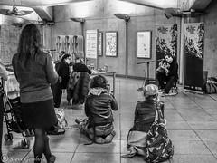 Let the Music Transport you on the London Underground. (steve.gombocz) Tags: street underground bw music blackandwhite zwartwit neroebianco sortoghvid mustavalkoinen svarthvitt svartochvitt pretoebranco noiretblanc schwarzundweiss negroyblanco noirblanc schwarzweiss negroblanco pretobranco nerobianco blacknwhite greyscale monochrome streetscene blackwhite bwphoto bwstreetscene bwstreet flickrbw bwflickr blackwhitephoto blackwhitephotography flickrstreet blackwhitestreet bwstreetphotography streetlife streetphotograph bwphotograph streetphotography streetbw bwphotography bwpictures flickraddict photosinblackandwhite blackandwhitephotographs purestreet out outandabout streetpictures streetphotos flickr exploreflickr streetmusic busking london londonbw londonscenes explorelondon flickrlondon olympus olympususer olympusamateur olympusm25mmf18 olympusem5mark2 olympusomd olympuszuikodigitalclub zuiko