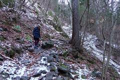 La risalita (STE) Tags: cascata del lupo piazze tn trentino baselga di pinè inverno winter freddo cold bosco forest salita sony rx100m4 neve snow wood sebastiana