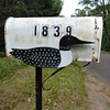 Lac du Flambeau, WI, Mailbox with Loon (Mary Warren 9.6+ Million Views) Tags: lacduflambeauwi northwoods nature flora plants green fence metal mailbox loon