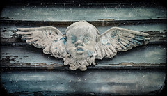 Thin Ice (drei88) Tags: cherub angel symbol memory patina figurine funerary forlorn aged weathered bleak stark dreary history artifact fragile atmosphere charged childhood fairytale imagination drab time newyear 2018 passage cycle cloudnothings artist artistry imaginative