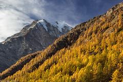 Autunno al Sempione (cesco.pb) Tags: simplonpass passodelsempione alps alpi switzerland svizzera fletschhorn montagna mountains autumn autunno canon canoneos60d tamronsp1750mmf28xrdiiivcld