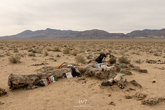 U2 Joshua Tree (W9JIM) Tags: california w9jim junk trash u2 joshuatree dead deadtree 7d2 24105l 24mm u2joshuatree