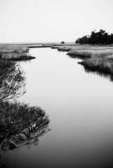DR2-037-17 (David Swift Photography) Tags: davidswiftphotography newjersey capemaycounty southjersey streams creeks marsh saltmarsh wetlands water seashore 35mm nikonfm2 ilfordxp2