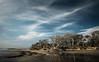 SHIPWRECK ON THE SOUTHERN SHORE (Suzanna Mars) Tags: botanybay driftwood boneyard southcarolina edistoisland beach