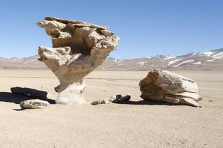Árbol de piedra (Uyuni, Bolivia)