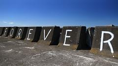 and that was 2017 (Paul J's) Tags: landscape coastal taranaki newplymouth marina seawall graffiti