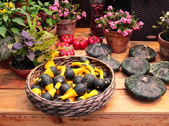 Colorful table (Aram Bagdasaryan) Tags: colour installation flowers pumpkin basket vegetable sigma1835mm18dchsm
