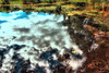 Scheinwelt - illusory world (camerito) Tags: illusory world scheinweld reflections reflexionen water wasser camerito nikon1 j4 flickr wow