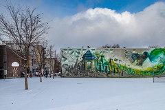mural Laurier ave (Eileen NDG) Tags: canada december montreal quebec mural publicart schoolyard snow streetart winter