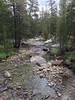 130817-01 (2013-08-21) - 0269 (scoryell) Tags: california tuolumnemeadows tuolumneriver yosemitenationalpark