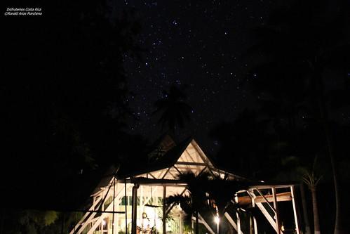 Gira Gemínidas 2017, Punta Coral CIENTEC