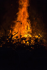 Fire in the wood (dharder9475) Tags: 2017 backyard bonfire dark fire flame night privpublic
