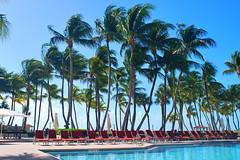 Key West (Florida) Trip 2016 0610Ri 4x6 (edgarandron - Busy!) Tags: florida keys floridakeys keywest casamarina
