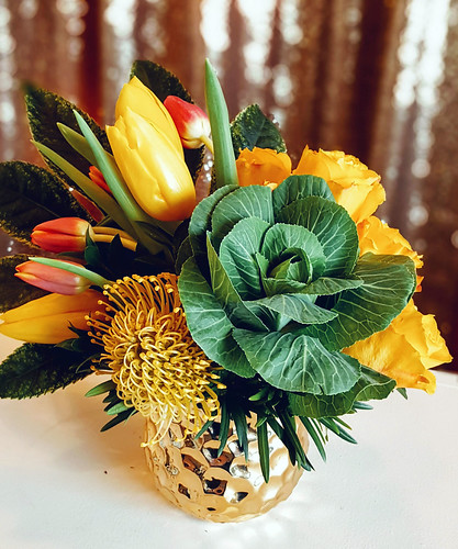"Kale_PinCushion_Tulips • <a style=""font-size:0.8em;"" href=""http://www.flickr.com/photos/81396050@N06/39105762262/"" target=""_blank"">View on Flickr</a>"