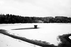 Isolation II (Jitka Ertelová) Tags: nature december snow sudetenland czechrepublic minimalism monochrome bw blackandwhite blackandwhitephoto canon trees isolation