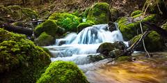 Flowing Nature (Theo Crazzolara) Tags: flowing flow river creek water waterfall longexposure österreich austria europe natur bach wasser green brook beck dorngraben grünburgerhütte