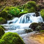 Flowing Nature thumbnail