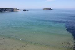 IMG_3761 (avsfan1321) Tags: ireland northernireland unitedkingdom uk countyantrim ballycastle carrickarede carrickarederopebridge nationaltrust landscape green blue ocean atlanticocean island