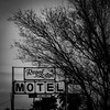 Where you give up good dollars for bad quarters (Maureen Bond) Tags: maureenbond ca motel desert tree sign offthehighway locals rooms vacancy