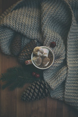 Hot chocolate (Monica Fiuza) Tags: winter invierno taza hotchocolate chocolate