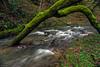 Verde caprichoso (Carpetovetón) Tags: agua río regato arroyo lacubilla sámano castrourdiales cantabria saltoagua cascada nikond610 nikon1835mm españa