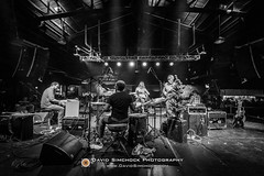 Amanda Ann Platt and the Honeycutters 2017-12-15 (Asheville, NC) (David Simchock Photography) Tags: amandaannplattandthehoneycutters asheville bw christmastree davidsimchock davidsimchockphotography frontrowfocus mannafoodbank nikon northcarolina theorangepeel xmastree avl avlent avlmusic band blackandwhite concert drummer drums event image livemusic music musician performance photo photography usa